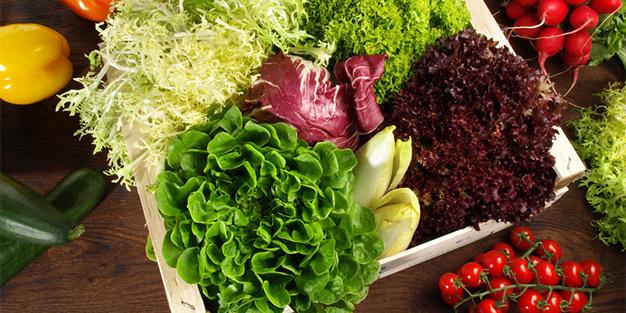 Abgepackter Salat